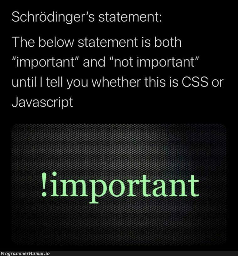 Schrodinger's statement   css-memes, javascript-memes, java-memes, bot-memes, cs-memes   ProgrammerHumor.io