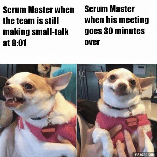 Our Scrum Master is a slippery one | ProgrammerHumor.io