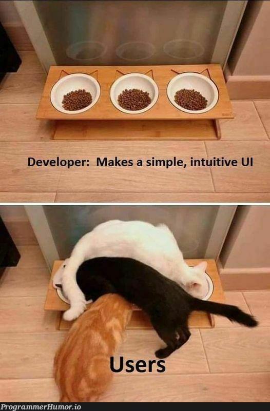 Oh, those users...   developer-memes   ProgrammerHumor.io