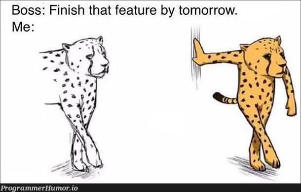 Adapt. Improvise. Overcome.   feature-memes   ProgrammerHumor.io