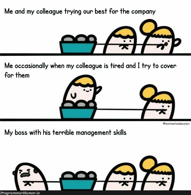 Devs vs Management | management-memes, try-memes, devs-memes, cs-memes | ProgrammerHumor.io