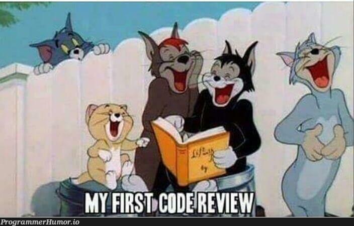 First code review   code-memes   ProgrammerHumor.io