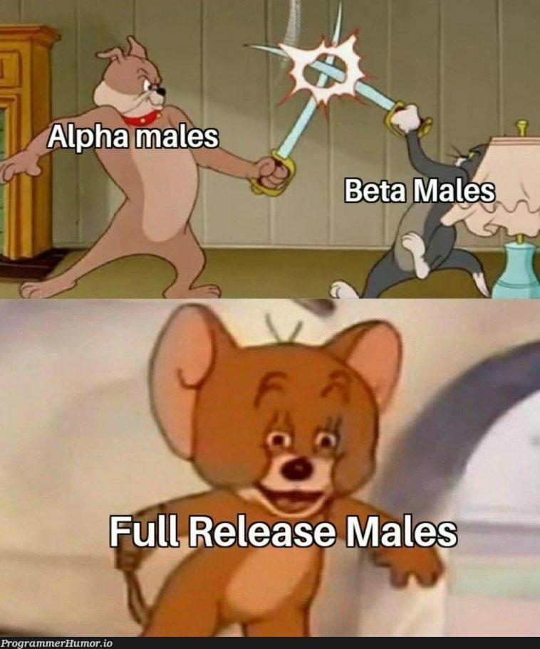 V1 | release-memes | ProgrammerHumor.io