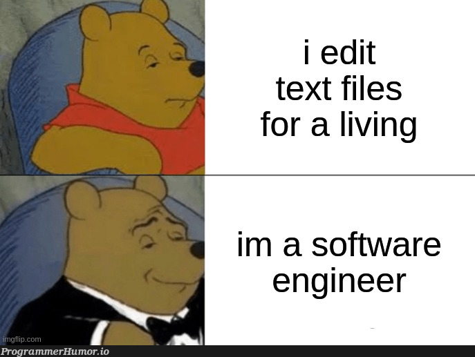 It's a living | software-memes, engineer-memes, software engineer-memes | ProgrammerHumor.io