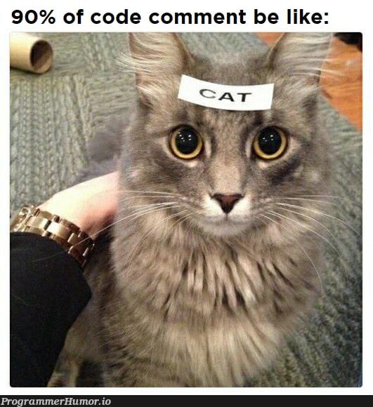 My experience as Jr.Dev | code-memes, comment-memes | ProgrammerHumor.io