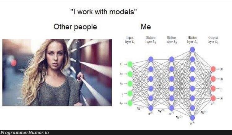 I work with models | ProgrammerHumor.io