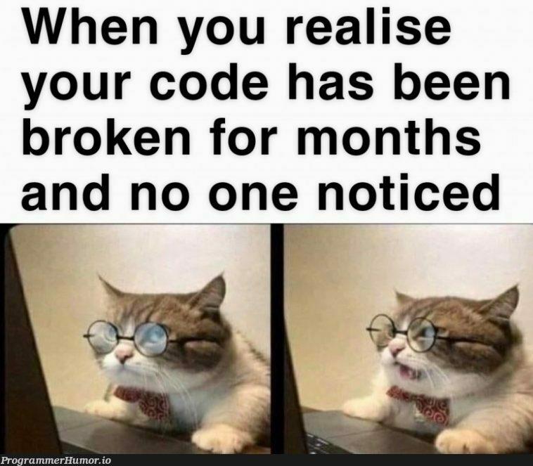 Do I tell someone?   code-memes   ProgrammerHumor.io