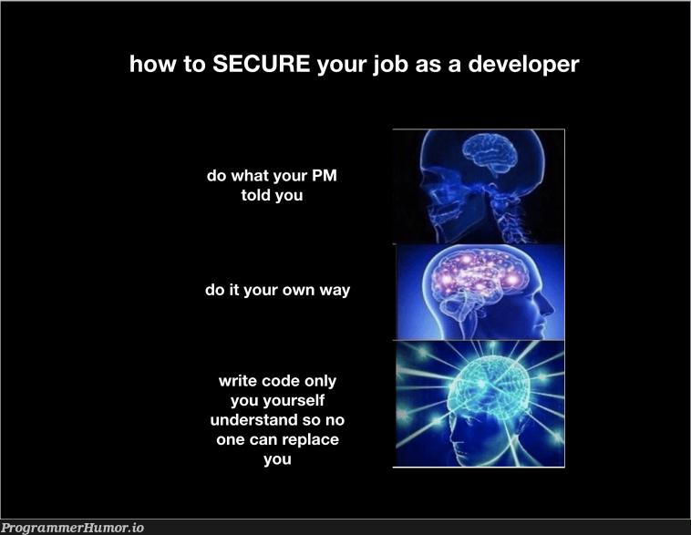 How to secure your job as a developer.   developer-memes, code-memes, IT-memes   ProgrammerHumor.io