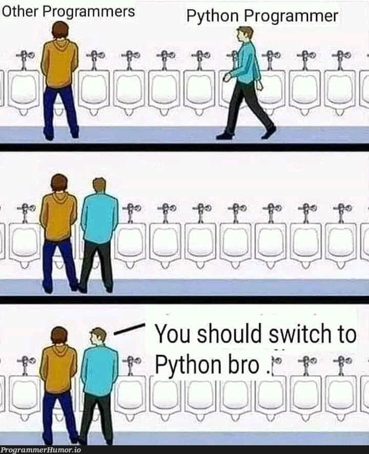 Python programmer   programmer-memes, python-memes, program-memes   ProgrammerHumor.io