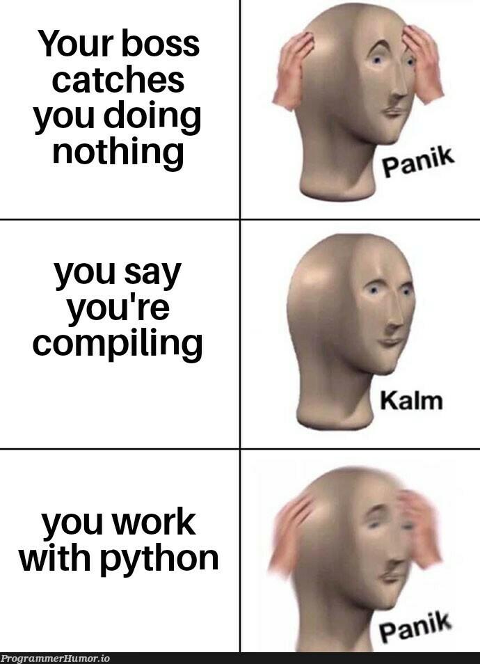 Please don't fire me   python-memes, catch-memes   ProgrammerHumor.io