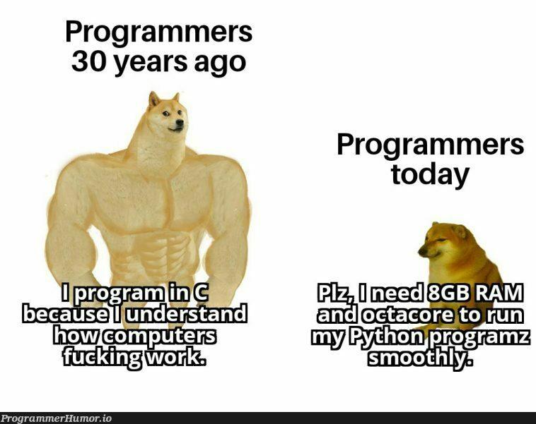 I program in both languages though! | programmer-memes, program-memes, bot-memes, ML-memes, language-memes | ProgrammerHumor.io