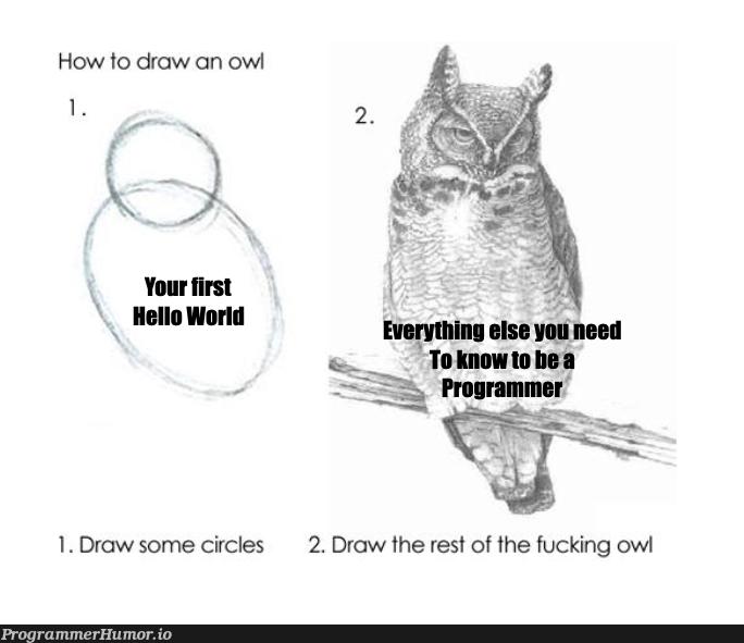 What it feels like when you are learning to code   programmer-memes, code-memes, program-memes, rest-memes, IT-memes   ProgrammerHumor.io