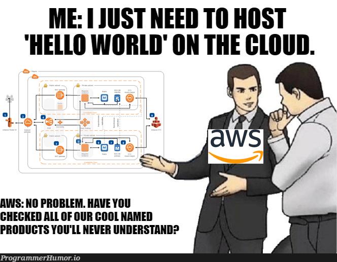 And the documentation is like the Amazon rain forest | aws-memes, amazon-memes, rest-memes, documentation-memes, product-memes | ProgrammerHumor.io