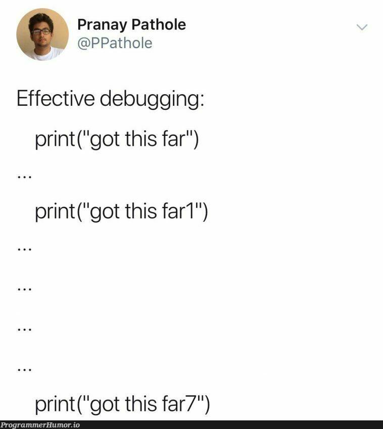 I feel seen   debugging-memes, bug-memes, debug-memes   ProgrammerHumor.io