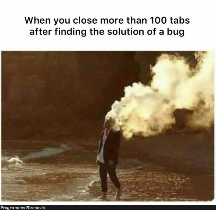 Nothing can match this feeling!   bug-memes, tabs-memes   ProgrammerHumor.io