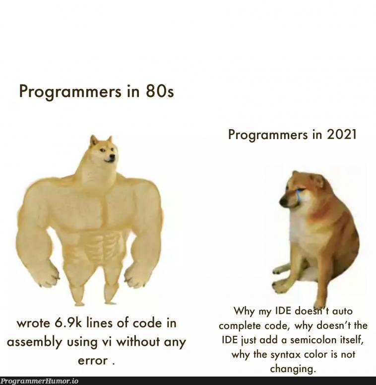 Why!!? | programmer-memes, code-memes, program-memes, assembly-memes, error-memes, ide-memes, semicolon-memes | ProgrammerHumor.io