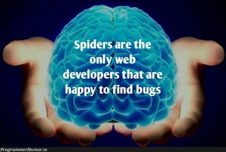 Bugs | developer-memes, web developer-memes, web-memes, bugs-memes, bug-memes, ide-memes, ML-memes | ProgrammerHumor.io