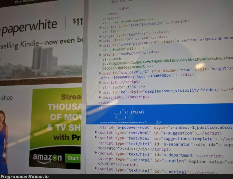 There's a meowing duck in Amazon's html code. (x-post from /r/hacking) | html-memes, code-memes, hacking-memes, amazon-memes, ML-memes, div-memes | ProgrammerHumor.io