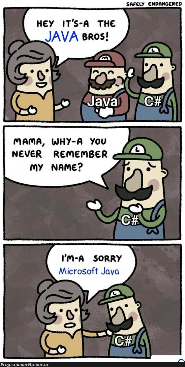 java bros   java-memes, microsoft-memes   ProgrammerHumor.io