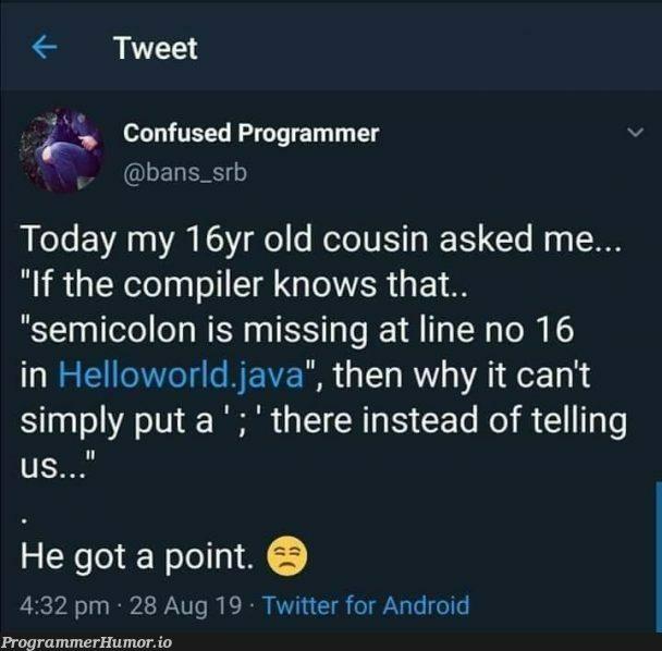 He's got a point! | programmer-memes, java-memes, android-memes, program-memes, compiler-memes, IT-memes, twitter-memes, semicolon-memes | ProgrammerHumor.io