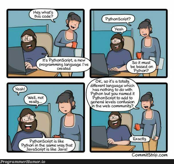 PythonScript comic strip   javascript-memes, java-memes, python-memes, IT-memes, language-memes   ProgrammerHumor.io