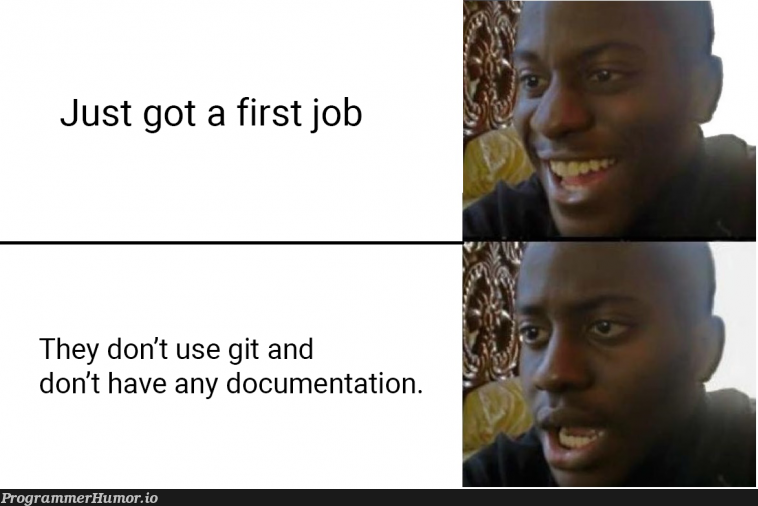This should be illegal   git-memes, documentation-memes   ProgrammerHumor.io