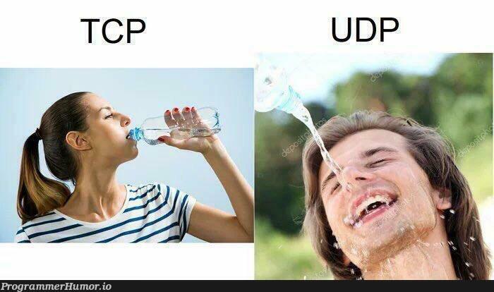 TCP vs UPD | tcp-memes | ProgrammerHumor.io
