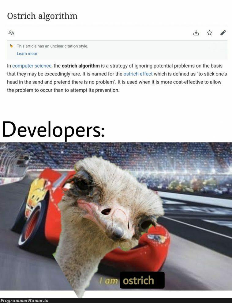 As a UI/UX developer, I am ostrich too | developer-memes, computer-memes, computer science-memes, ux-memes, algorithm-memes, IT-memes | ProgrammerHumor.io