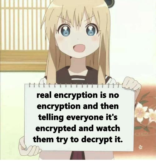 Encrypted data | try-memes, data-memes, encryption-memes | ProgrammerHumor.io