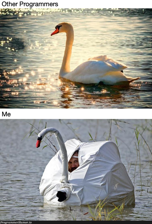 Impostor Syndrome Be Like | programmer-memes, program-memes | ProgrammerHumor.io