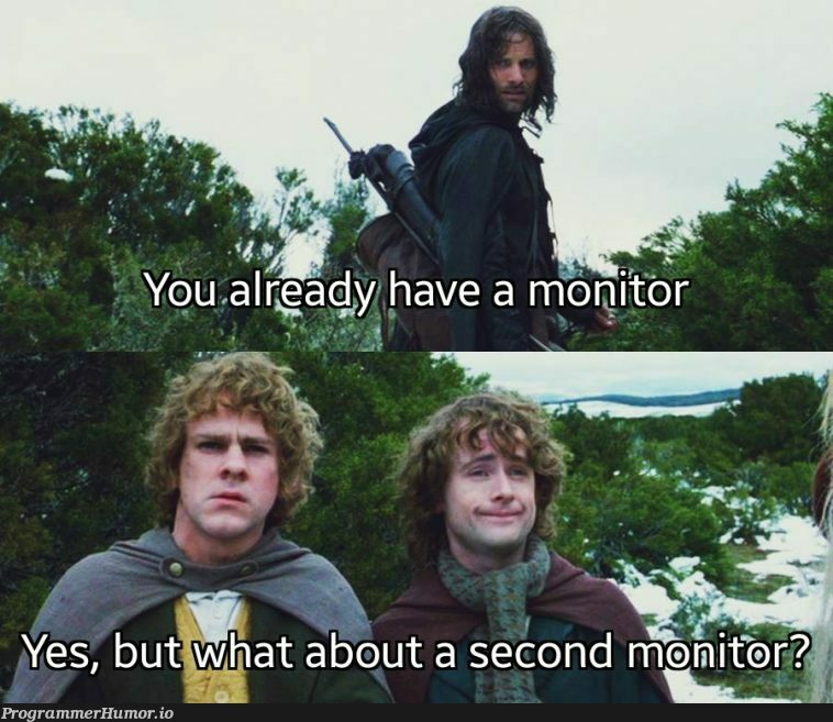 * Asking my manager for a monitor * | monitor-memes, manager-memes | ProgrammerHumor.io