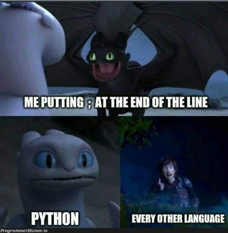 ;   ProgrammerHumor.io