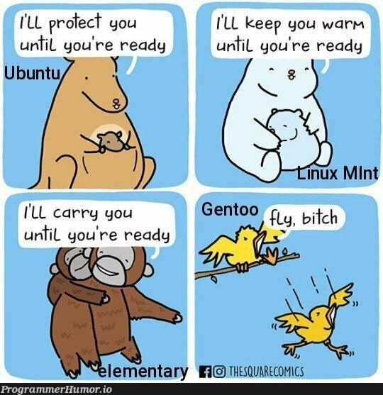 Time to soar! | ux-memes, ubuntu-memes | ProgrammerHumor.io