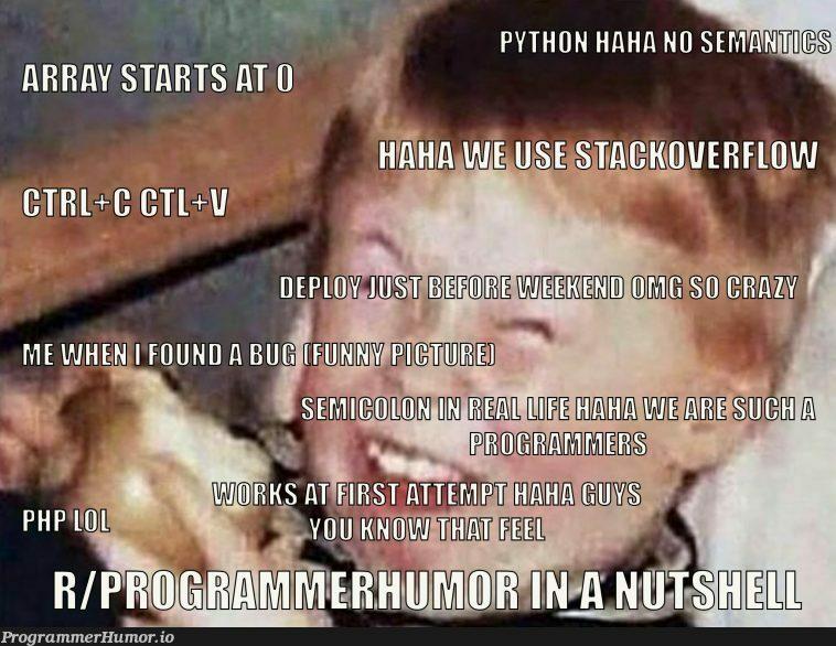 Programmer Humor in a nutshell   programmer-memes, program-memes, shell-memes   ProgrammerHumor.io