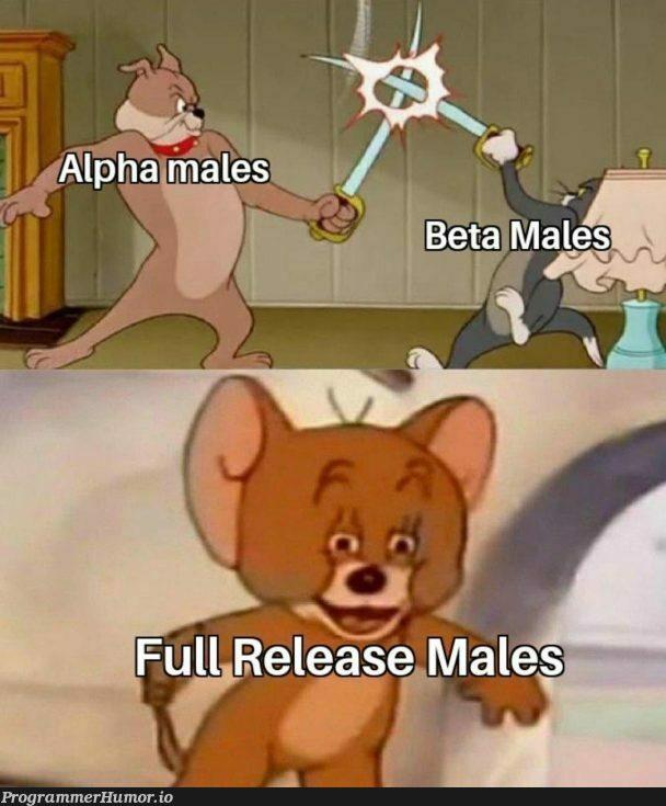 V1   release-memes   ProgrammerHumor.io