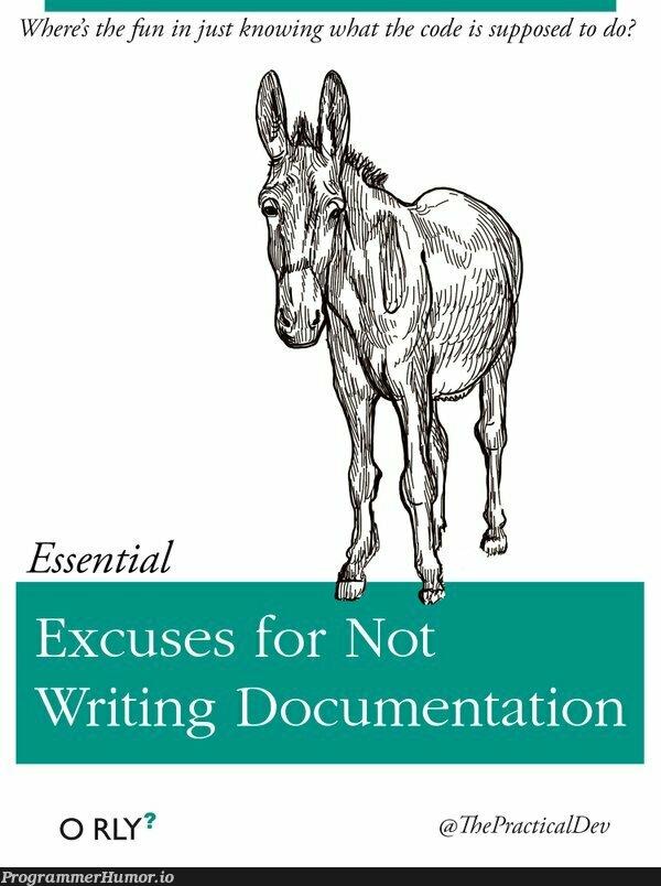 The only book worth a damn   code-memes, documentation-memes   ProgrammerHumor.io