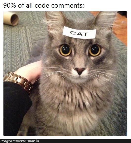 Code comments be like   code-memes, comment-memes   ProgrammerHumor.io