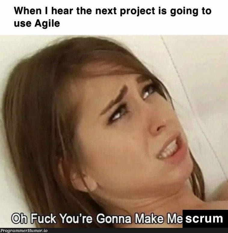 Not Safe For (Agile) Work(stream Integration) | stream-memes | ProgrammerHumor.io