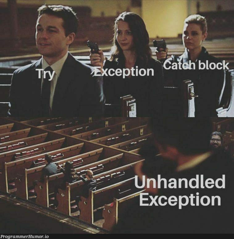 Gotta catch 'em all | catch-memes | ProgrammerHumor.io