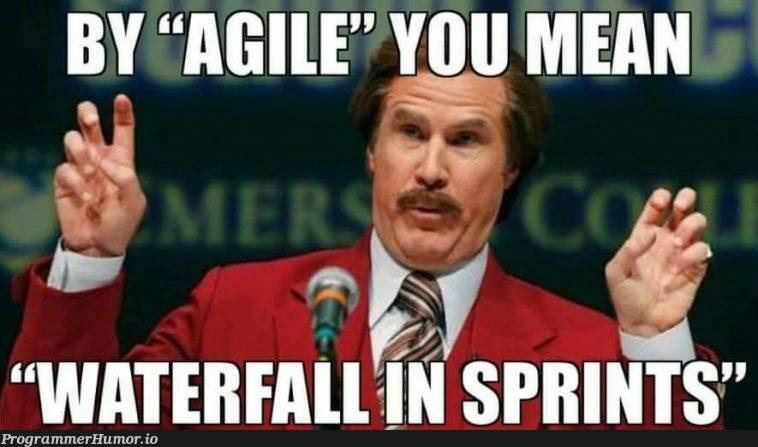 Companies getting Agile wrong since 2001   ProgrammerHumor.io
