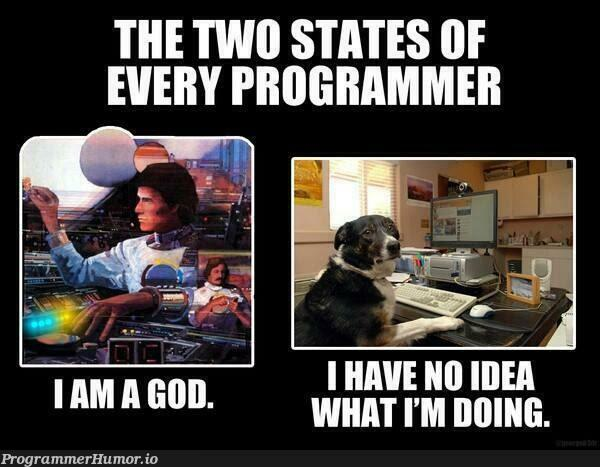 Mostly the 2nd one...   ProgrammerHumor.io