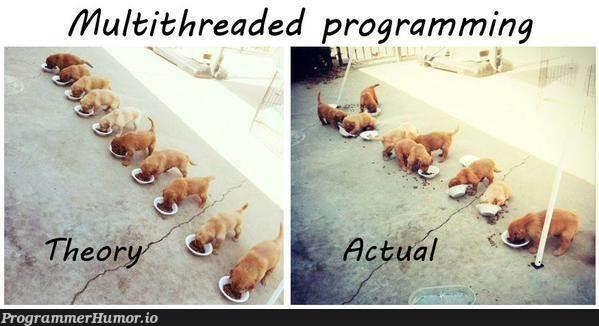 Multithreading in a nutshell! | programming-memes, program-memes, threading-memes, multithreading-memes, shell-memes | ProgrammerHumor.io