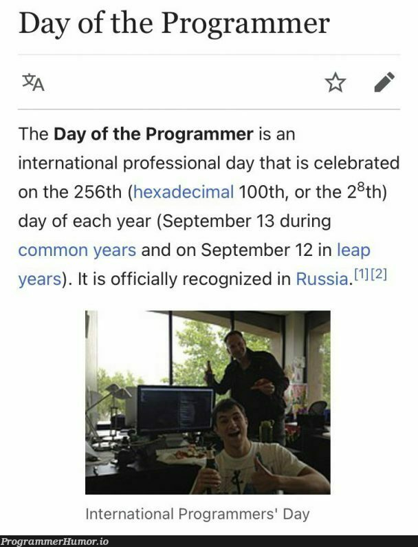 Happy International Day Of The Programmer, fellow programmers. May the stackoverflow stay by your side | programmer-memes, stackoverflow-memes, stack-memes, program-memes, overflow-memes, IT-memes, ide-memes | ProgrammerHumor.io