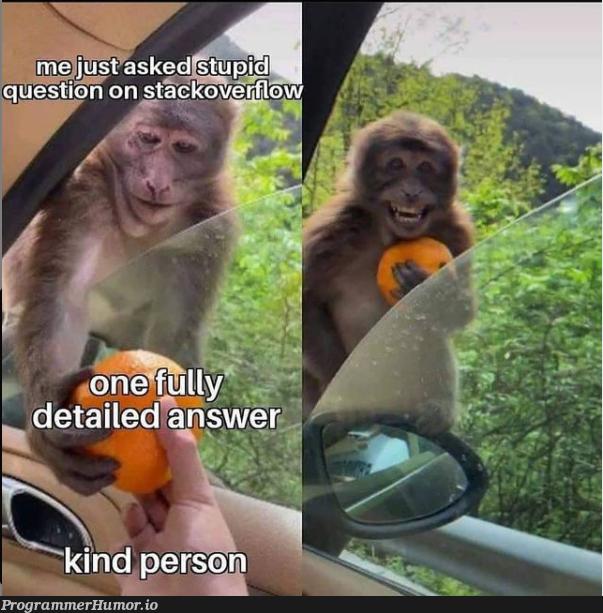 Kind person | stack-memes | ProgrammerHumor.io