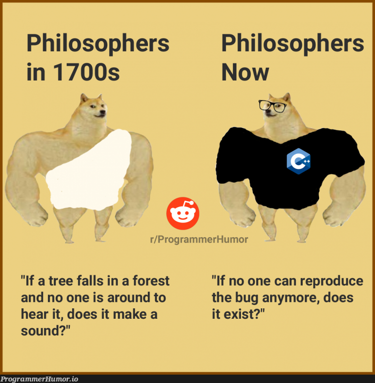 I don't know why I used a Toga, but here ya go | programmer-memes, program-memes, bug-memes, rest-memes, IT-memes | ProgrammerHumor.io