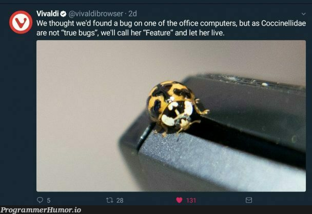 It's not a bug, it's a feature | computer-memes, bugs-memes, bug-memes, feature-memes | ProgrammerHumor.io