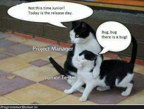 Not today junior.. not today... | bug-memes, release-memes, manager-memes | ProgrammerHumor.io
