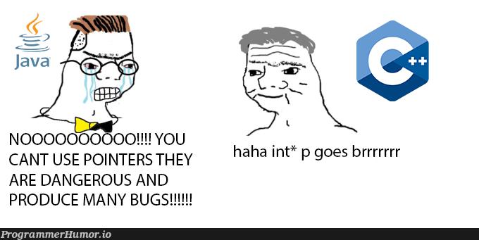 has the format spread here yet? | bugs-memes, bug-memes, pointers-memes | ProgrammerHumor.io