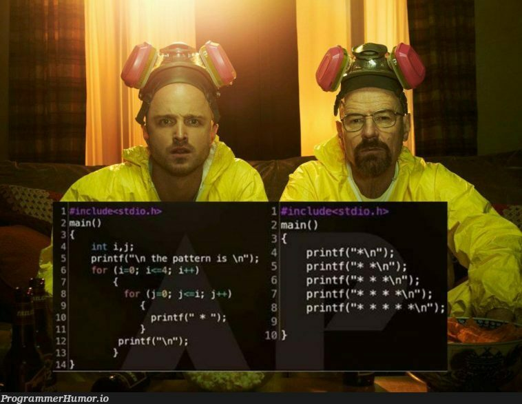 Beginner VS Professional | ProgrammerHumor.io
