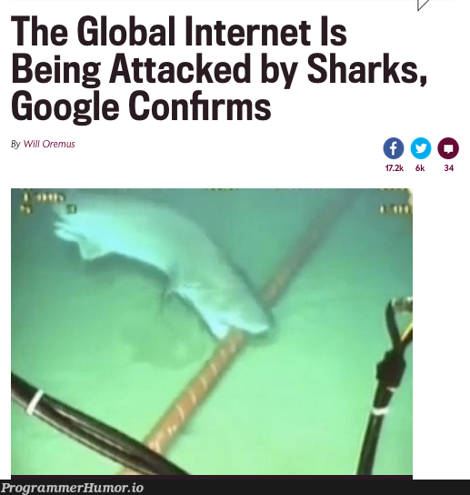 The Wireshark release we didn't want. | google-memes, global-memes, release-memes, internet-memes | ProgrammerHumor.io